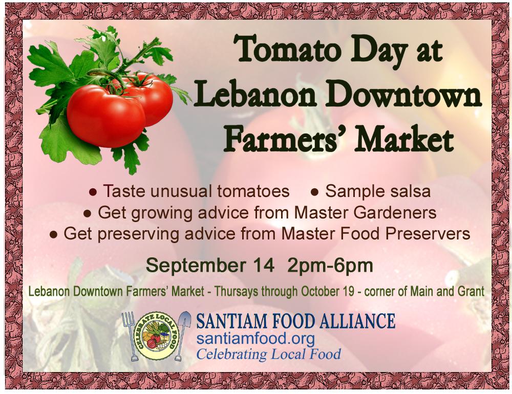 tomato day 2017
